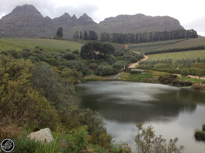Hidden Valley - Stellenbosch - Boring Cape Town Chick - Blog Review20