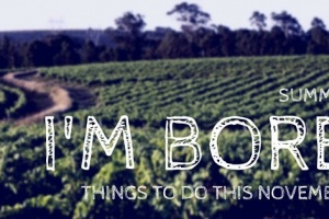 Things To Do In Cape Town This November 2014