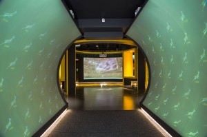 Springbok Museum Entry tunnel