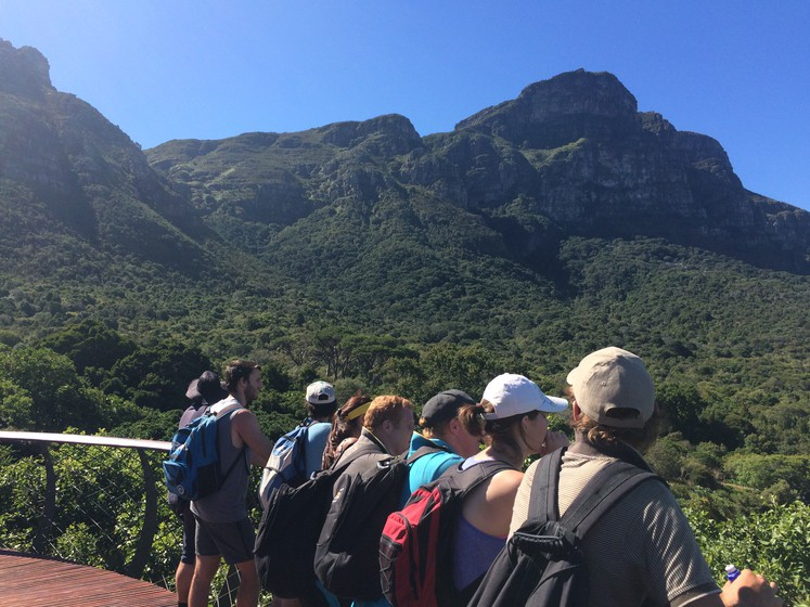 people standing on wooden bridge over looking trees and mountains with blue skies