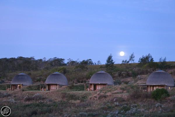 Moon rising over Kwena Huts