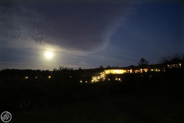 Full Moon at Gondwana