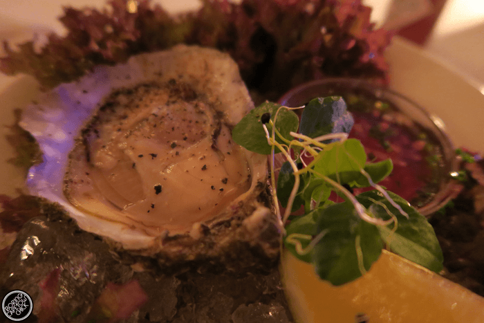 Pigalle Oyster