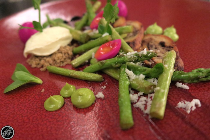 Dash asparagus starter