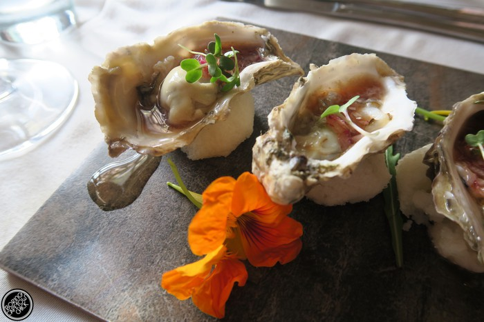 Oysters at Societi Bistro