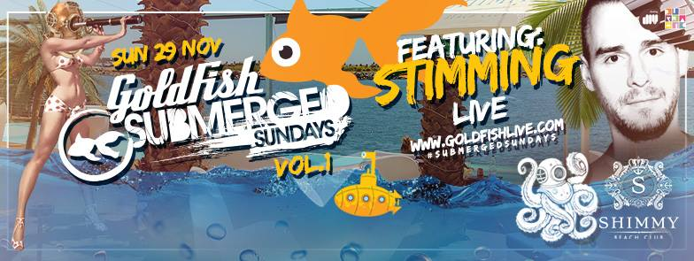 Submerged Sunday 2015