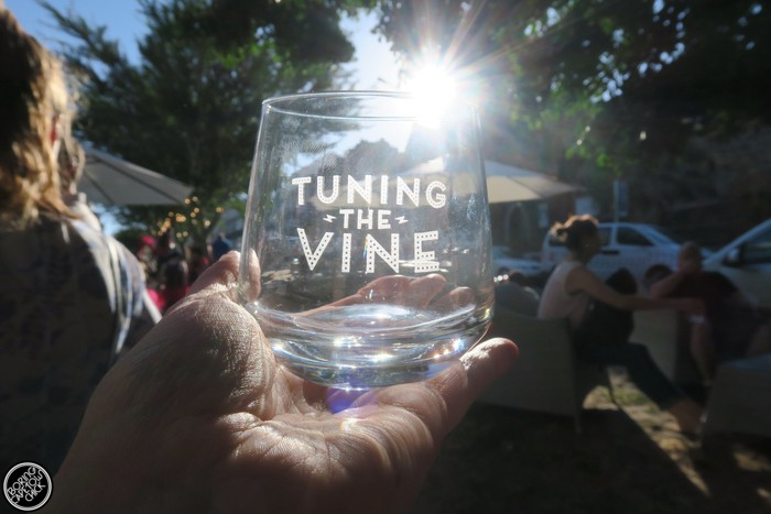 Tuning the Vine - December 2015 - Boring Cape Town Chick 1